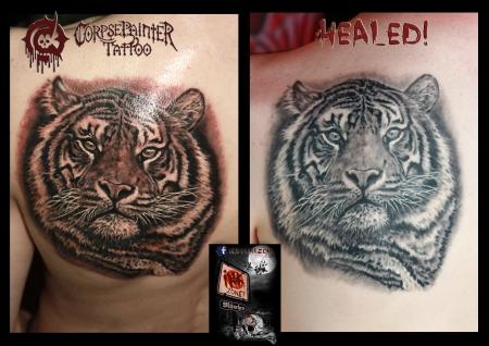 tiger-Tattoo: tiger healed