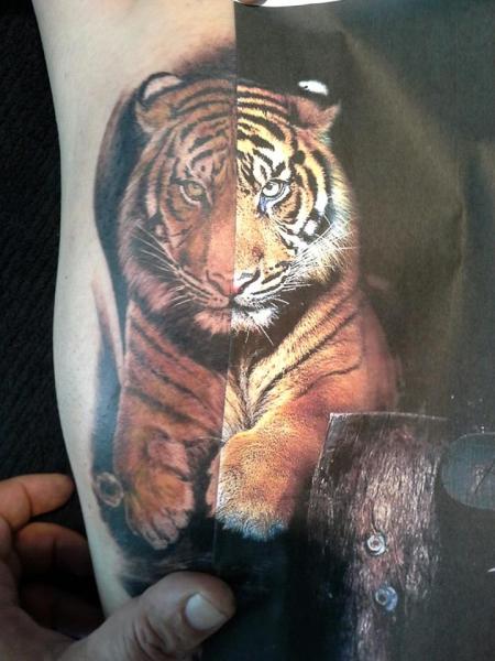 tiger-Tattoo: tiger