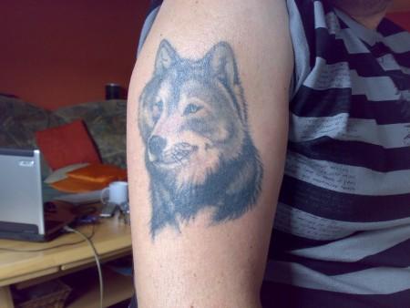 Ich liebe Wölfe