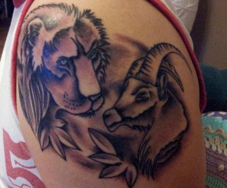 widder und löwe