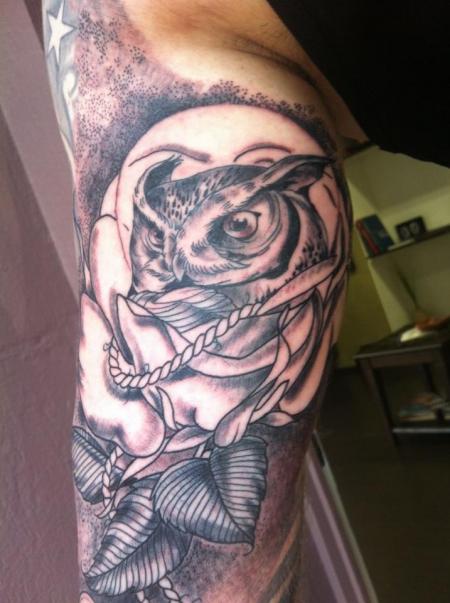 Eule im Rose
