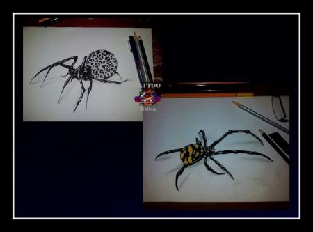 Spider Tattoo Drawing