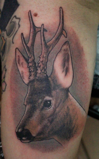 Single Needle Deer