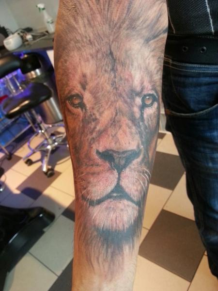 Löwe halt