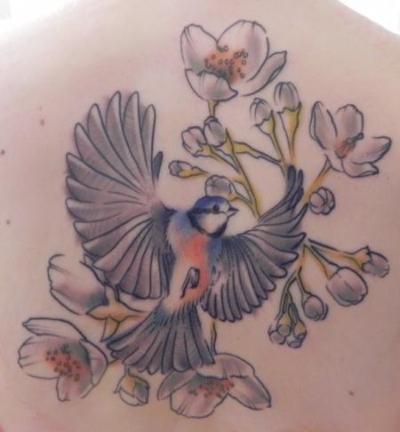 Blaumeise & Jasminblüten Detail