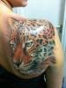 Tierportrait Leopard, tätowiert von Tibi