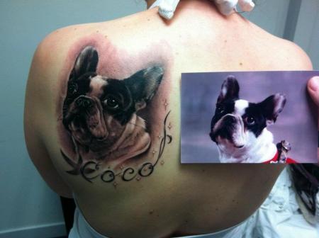 Portrait Bulldogge, gestochen von Tibi