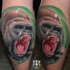 Gorilla by Mirel ..Mannheim Ink