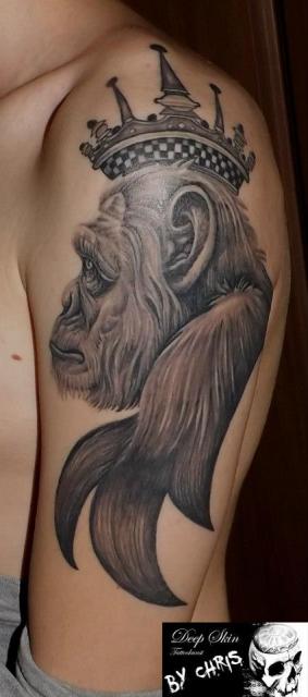 Affenportrait Chimp.