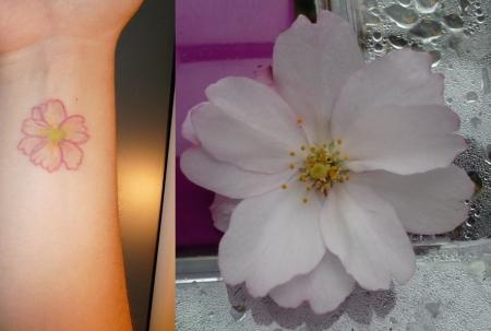 Kierschblüte
