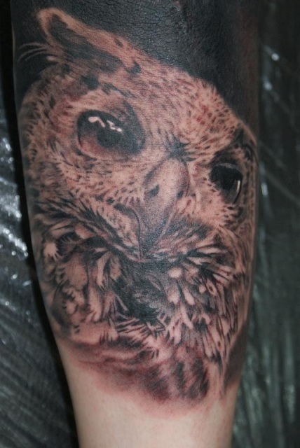 augen-Tattoo: eule