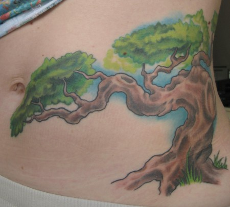 Cover up, Bonsai