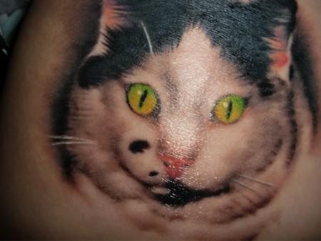 katze-Tattoo: Meine verstorbene Katze