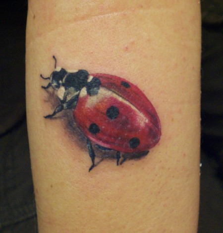 marienkäfer-Tattoo: MARIENKÄFER