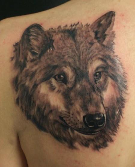 Tattoos Zum Stichwort Wolf Tattoo Bewertung De Lass Deine