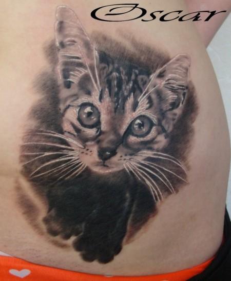 schwarz-weiß - Katze