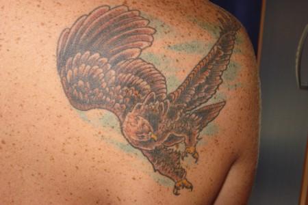 Adler Japanisch