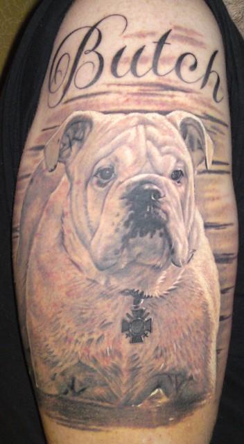 Bulldogge BUTCH