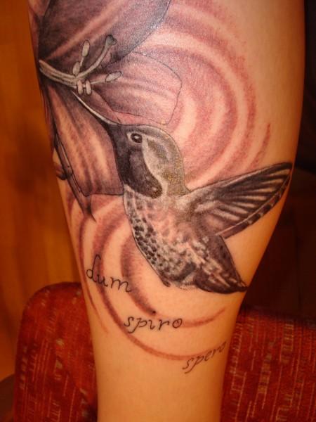 Kolibri mit Lilie und Zitat