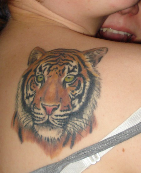 tiger-Tattoo: Tiger