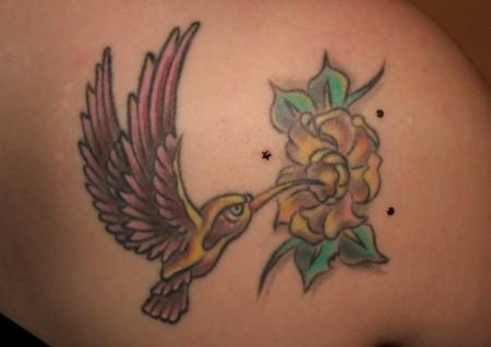 Kolibri & Skindiver
