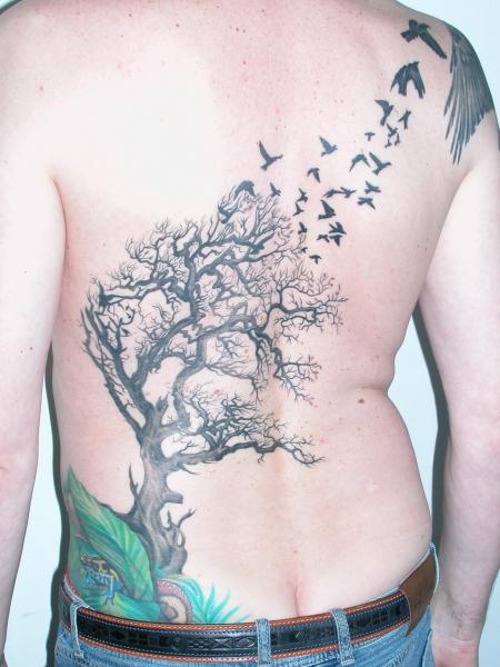 Tattoos Zum Stichwort Baum Tattoo Bewertung De Lass Deine
