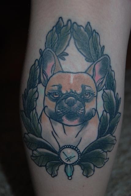 Französische Bulldogge Lotti