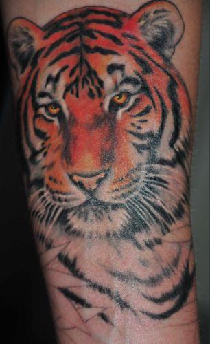 Tiger Teil 1