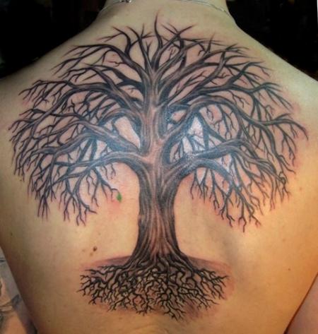 Suchergebnisse f 252 r baum tattoos tattoo bewertung de lass deine