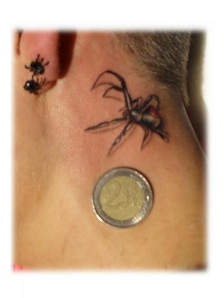 Spinne realistisch