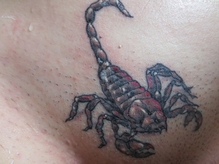 Erstes Tattoo: Skorpion :-)