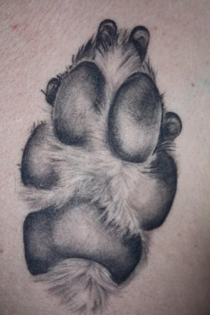Tattoos zum Stichwort Pfote | Tattoo-Bewertung.de | Lass Deine Tattoos