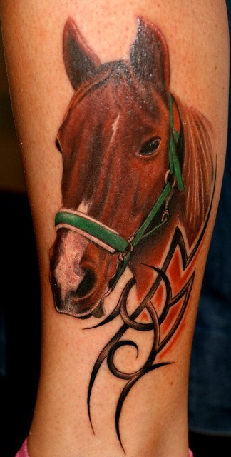 Portrait Pferd, 1.5 Stunden Arbeit