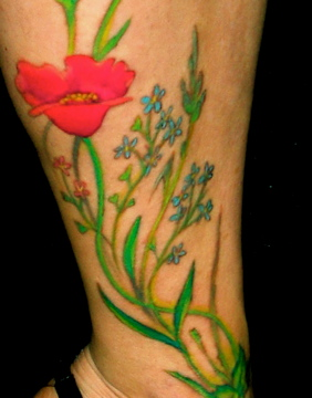 details Aufnahme von den Alm Blumen...