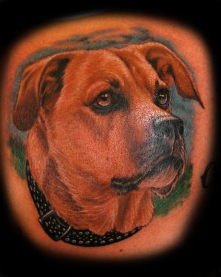 Dog Portrait, 3,5 Stunden Arbeit