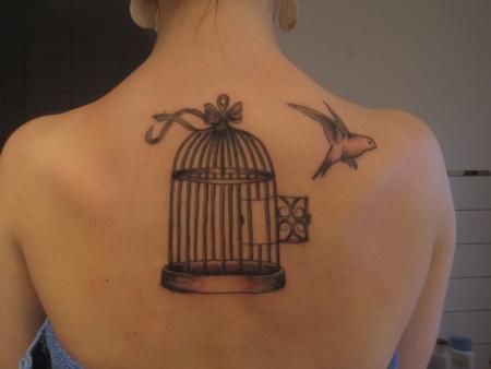 vogel und käfig