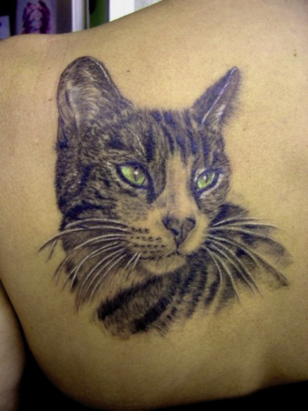 meinetattoobewertung katzen portrait tattoos von tattoo. Black Bedroom Furniture Sets. Home Design Ideas