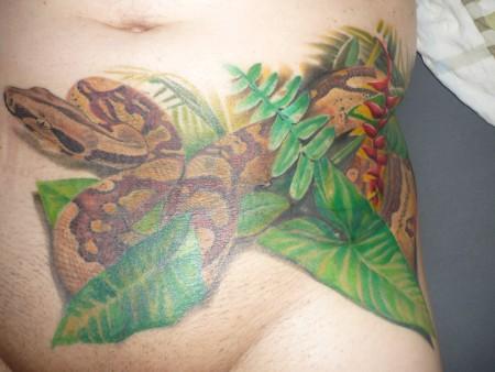 Cover-up meiner Schlange