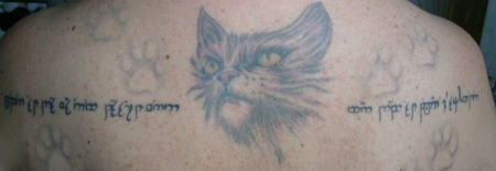 und noch ne alte Katze