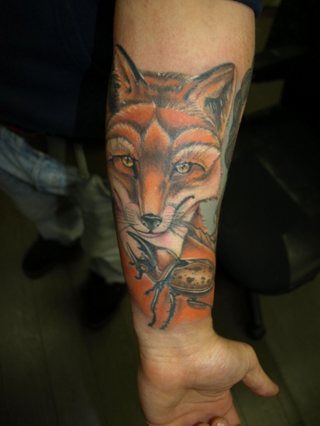 Fuchs und Hirschkäfer