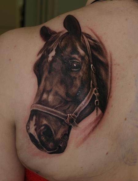 Pferd portrait by SoFat