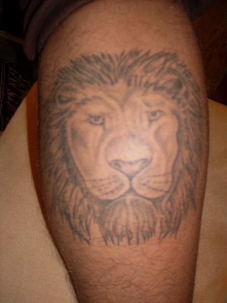 Mein Sternzeichen Der Löwe !!!