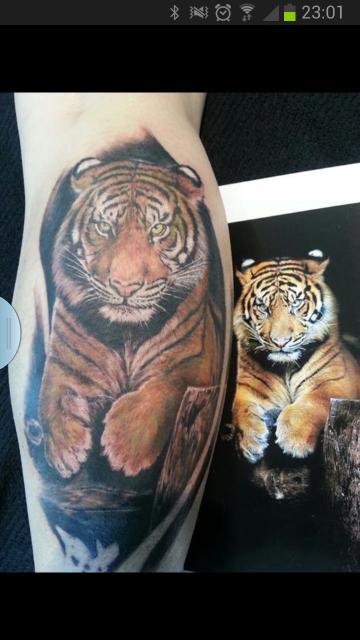 tiger-Tattoo: der ganze Tiger (auf Wunsch)