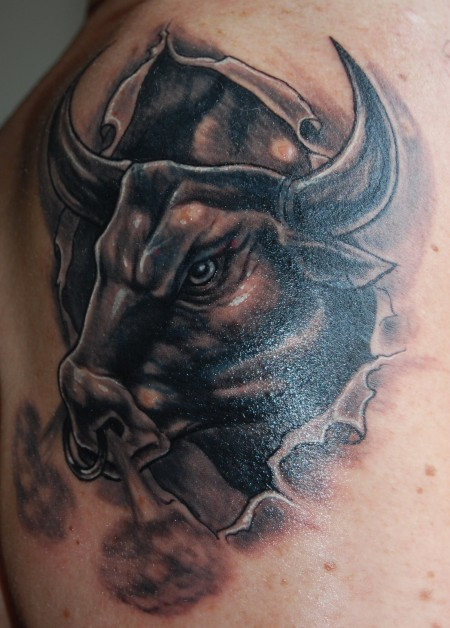 Cover-up Stier