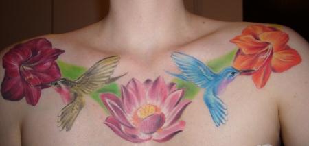 Lotus, Kolibri, Amarllis