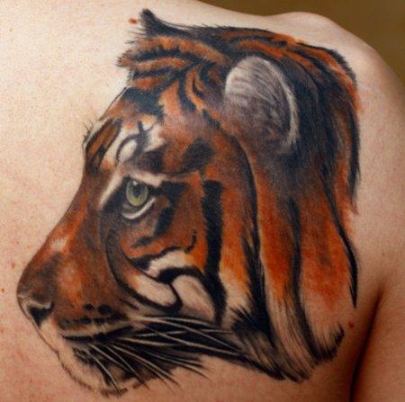 Tagträumender Tiger