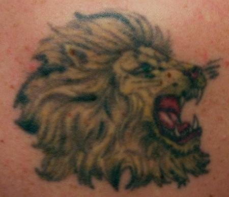 Mein 1. Löwe