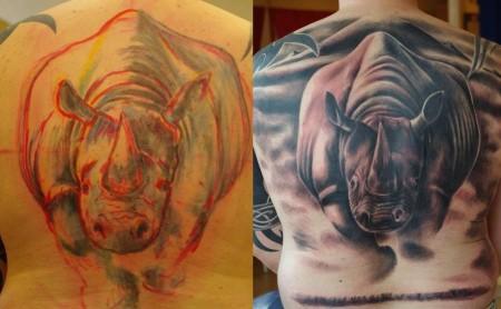 rhino-rücken