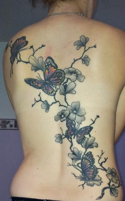 Schmetterlinge und Kirschblütenzweig