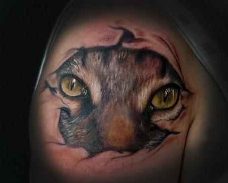 augen-Tattoo: cat